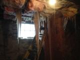 <h5>Frozen sewage</h5><p></p>