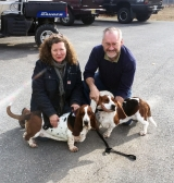 <h5>our new adoptees: basset hounds from China</h5><p>																																																																																																																							</p>