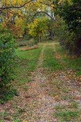 <h5>Farm lane</h5><p></p>